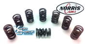 Norris HD Single Valve Springs with Spring Dampeners MADE IN USA